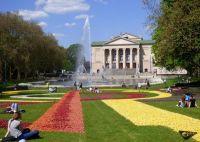 Tulipany_przed_Teatrem_Wielkim_Tulpen_vor_dem_Opernhaus